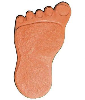 Pėda kairė raudona